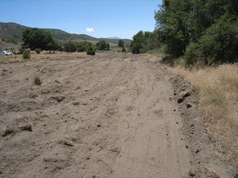 03. Dirt